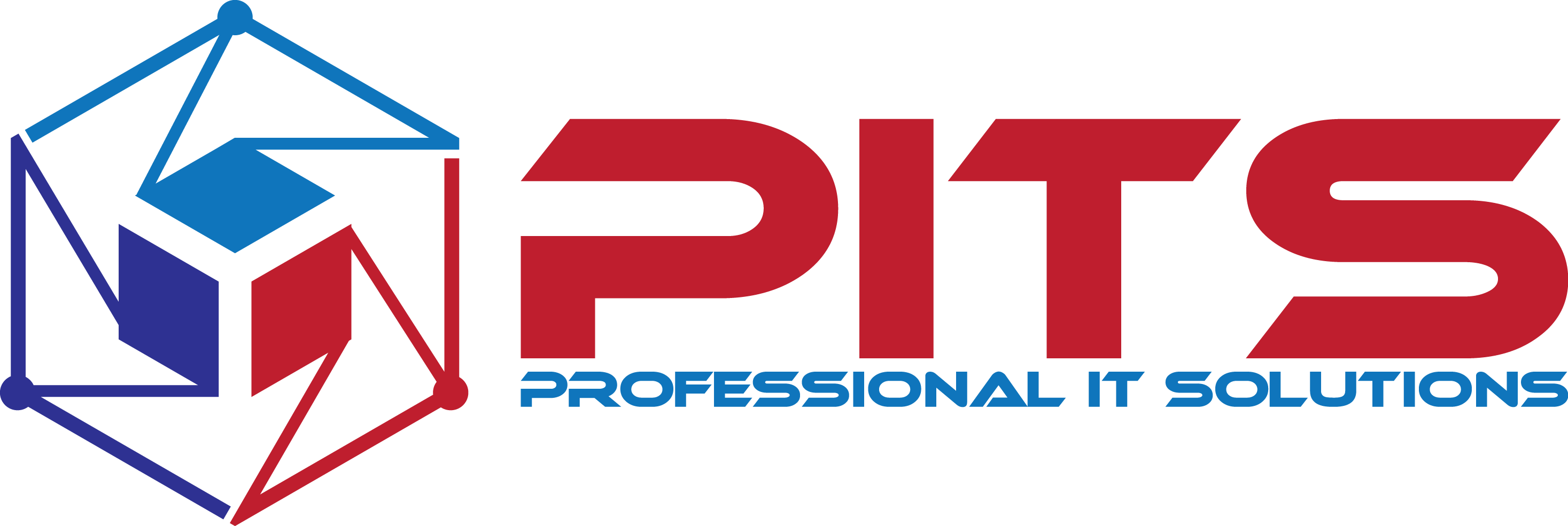 pits GmbH | Professional IT Services